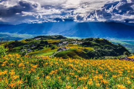 风景,云,花,山,中国,中国,村庄,全景,台湾,台湾