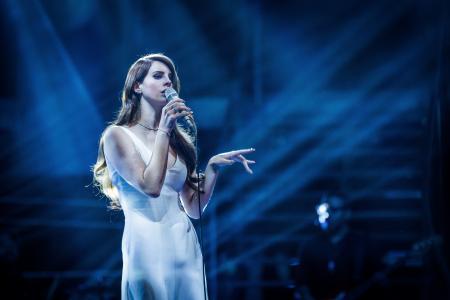Lana del Rey,歌手Lana del Rey