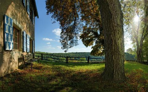 长凳,性质,长凳,商店,草,长凳,心情,房子,树,早上,光,树