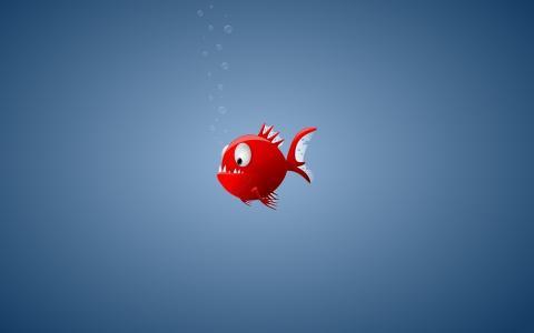 极简主义,食人鱼,鱼,红色,气泡