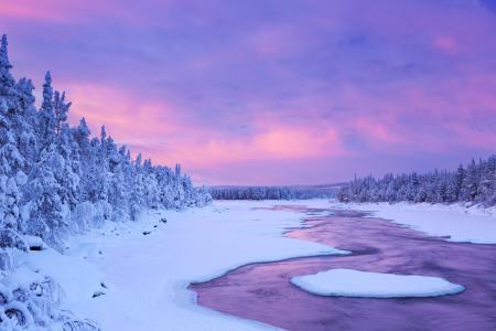 拉普兰,芬兰,冬天,天空,雪,云杉,性质