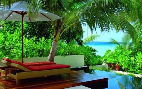 可爱的景色,绿色,美丽,可爱,颜色,多彩,椅子,椅子,叶子,美女,蓝色