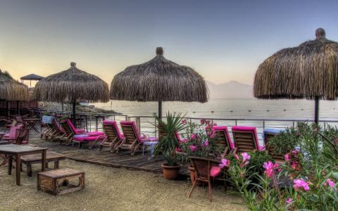 度假,海,鲜花,小屋