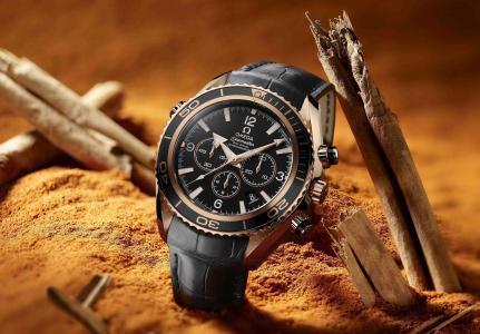 手表,欧米茄,海马同轴,天文钟