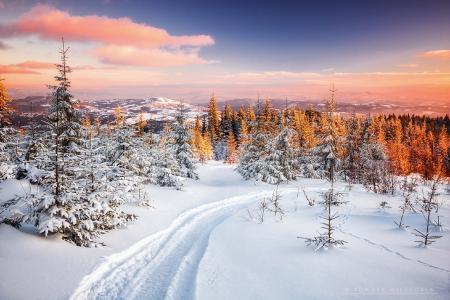 冻结,冬季,雪,光,日落,波兰,山,路线,橙,托马斯Wieczorek
