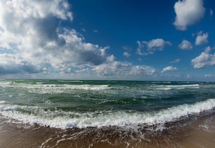 海洋,牛,天空,云,美女,海岸,沙子