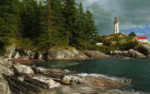 照片,性质,加拿大,灯塔,森林,石头,岩石,日志,亲,照片,冰