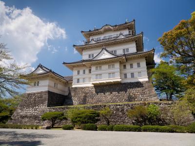 日本的宝塔,城堡,日本的城堡,美丽
