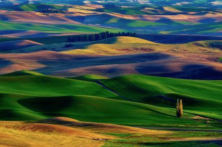 山,田地,地毯,过渡