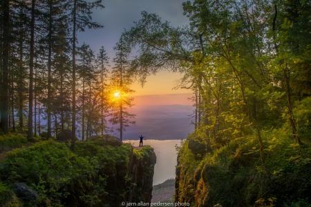 性质,挪威,山,森林,日出,日落,人
