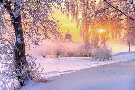 太阳,寺,俄罗斯,树,自然,白霜,冬天,雪,光