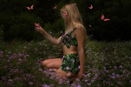 蝴蝶,木仙女,幻想