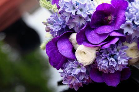 白色,中联,花束,兰花,风信子,毛茛属