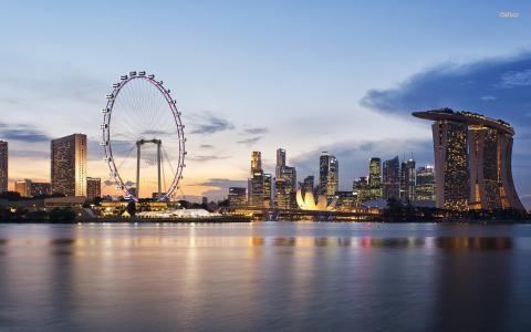 新加坡,亚洲,建筑,水,车轮