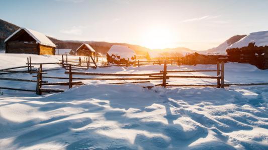 冬天雪地里的那抹阳光