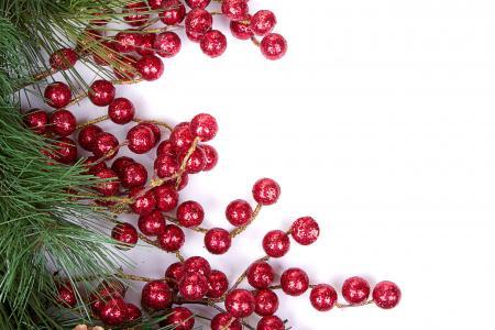 浆果,假日,圣诞树