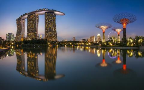 新加坡,城市,首都,照片,建筑物,河,卡朗,天空,晚上,反射