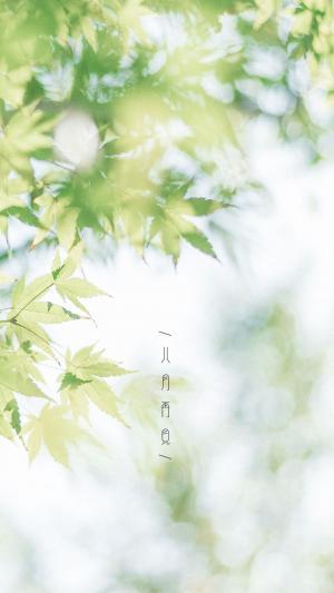 八月再见唯美朦胧树影