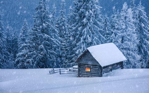 冬天,性质,房子,森林,雪,美丽