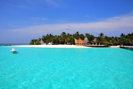 马尔代夫,度假村,热带地区,棕榈树,美丽