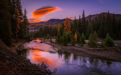 河,日落,森林,性质