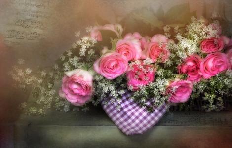 框,鲜花,玫瑰,餐巾,笔记