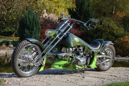 绿色,自行车,吨,定制,调整,樵夫,航海,蛇