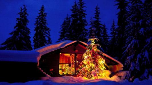 圣诞树上挂祝福