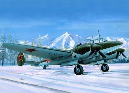 飞机,姓苏,艺术,典当,ne-2m