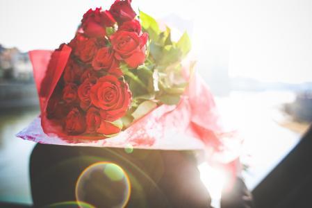 鲜花,玫瑰,礼物,宏观照片主题