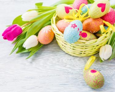 郁金香,复活节,鸡蛋,鲜花,复活节