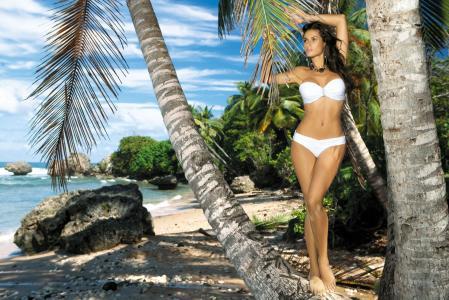 beatrice chirita,女孩,模型,黑发,姿势,海滩,度假村,海洋,手掌,图,美丽