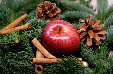 新的一年,圣诞节,树枝,针,云杉,锥,苹果,肉桂