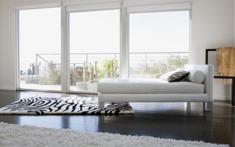 枕头,地毯,室内,设计,窗口,斑马,床