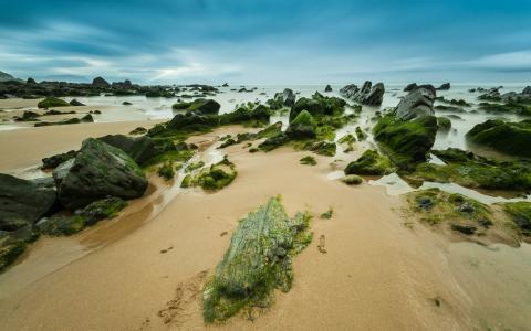 海岸,石头,沙子,地平线