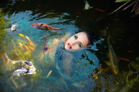 照片,脸,身体,在水之下,鱼,鲤鱼