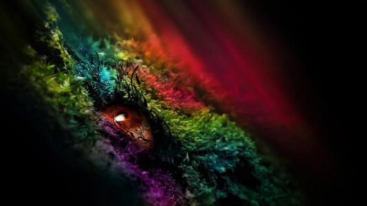 眼睛,瞳孔,模式