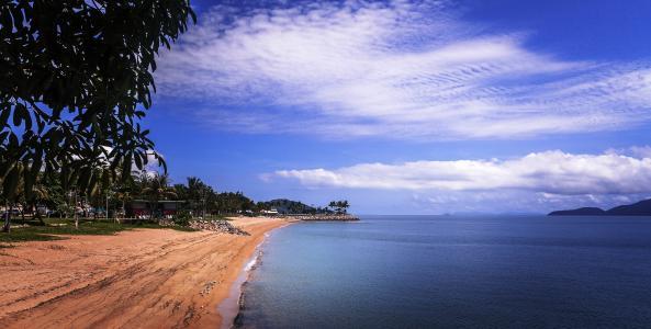 天空,大海,沙滩,棕榈树