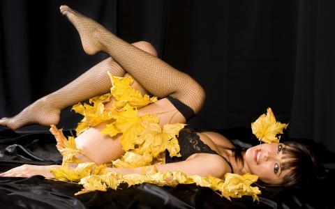 女孩,丝袜,黄叶,看,秋天的动机