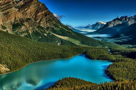 山,路,森林,湖,绿党,天空,云,美女