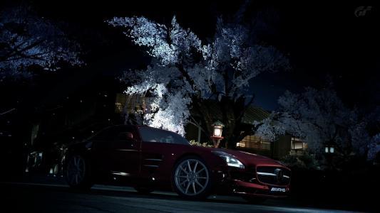 奔驰,晚上,树木,道路,灯笼