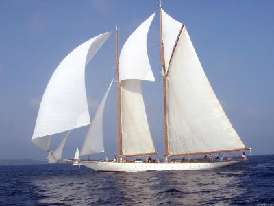 海,游艇,帆船,帆船游艇