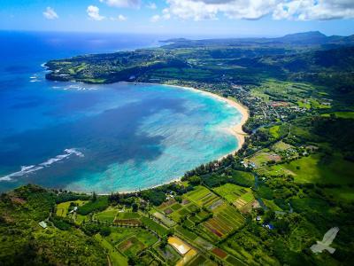 岛,镰鱼湾,考艾岛,哈纳雷伊湾,夏威夷