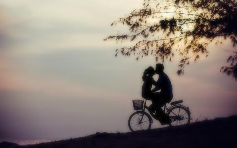 爱,柔情,自行车