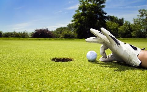 手套,草坪,高尔夫,手,玩,洞,高尔夫,球,运动