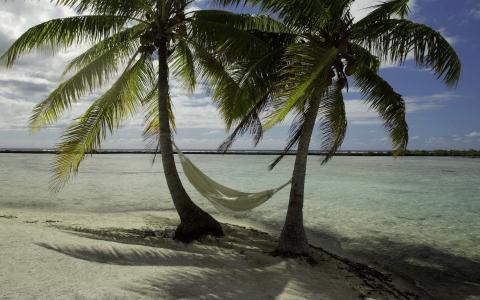 棕榈树,白沙,海风,吊床
