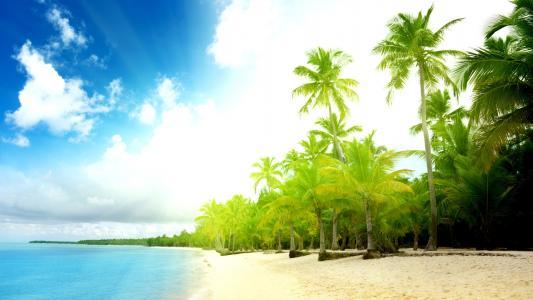 岸,沙,水,海洋,天空,云,波浪,手掌