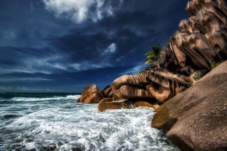 塞舌尔,海洋,天空,云,棕榈树,海滩,度假,度假村,美女,石头