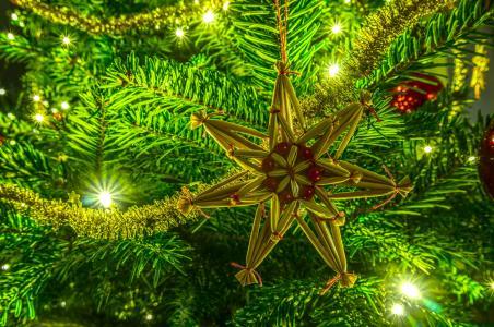 圣诞树,分支机构,玩具,灯,新的一年,圣诞节