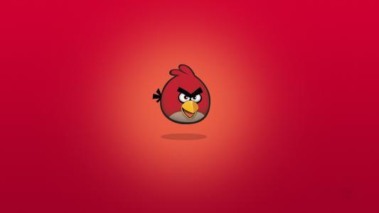 rio,愤怒的小鸟,鸟,漫画,rio
